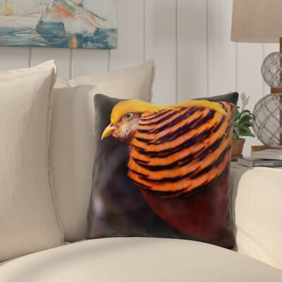 Pratincole Colorful Bird Throw Pillow