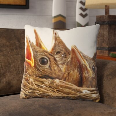 Plunkett Baby Bird Throw Pillow