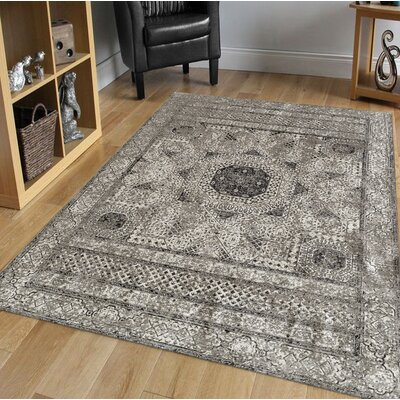 Alloway Transitional Light Gray Area Rug Size: Rectangle 53 x 76