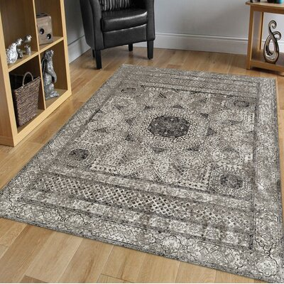 Alloway Transitional Light Gray Area Rug Size: Rectangle 710 x 1010
