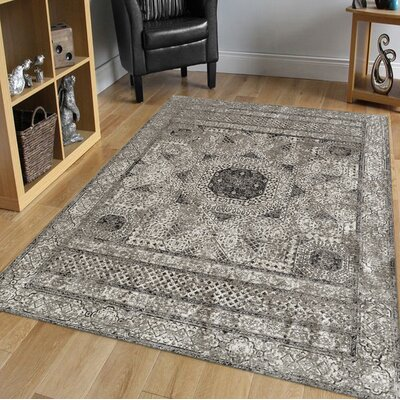 Alloway Transitional Light Gray Area Rug Size: Rectangle 96 x 139