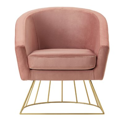 Hirano Barrel Accent Chair Upholstery: Blush/Gold