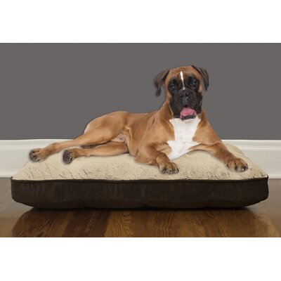 Orthopedic Foam Pillow Size: Medium (40 W x 30 D x 8 H), Color: Brown