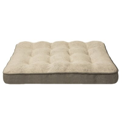 Orthopedic Foam Pillow Size: Medium (40 W x 30 D x 8 H), Color: Gray
