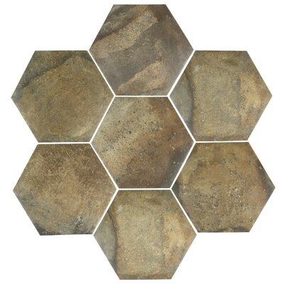 Victoria Ferro Hexagon 14.13 x 16.25 Porcelain Field Tile in Brown