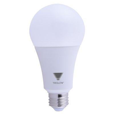 100W Equivalent E26 LED Standard Light Bulb Bulb Temperature: 3000K