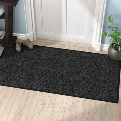 Polynib Solid Doormat Mat Size: Rectangle 3 x 6, Color: Charcoal