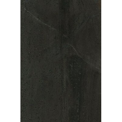 Montpellier 16 x 24 Ceramic Field Tile in Nero