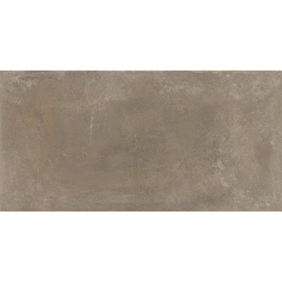 Basole 12 x 24 Ceramic Field Tile in Grigio