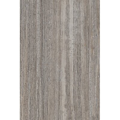 Thassos 16 x 24 Ceramic Field Tile in Silver