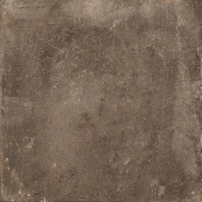 Basole 20 x 20 Ceramic Field Tile in Bruno