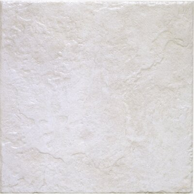 Romagna 13 x 13 Ceramic Field Tile in Blanco