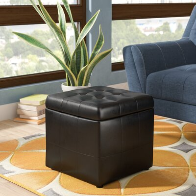 Caroline Storage Ottoman Upholstery: Black