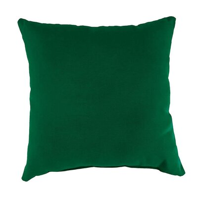 Shenandoah Outdoor Throw Pillow Color: Pine Green