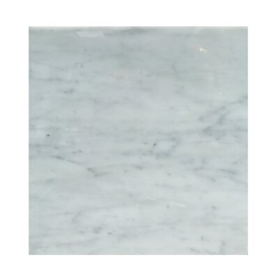 18 x 18 Natural Stone Field Tile in Carrara
