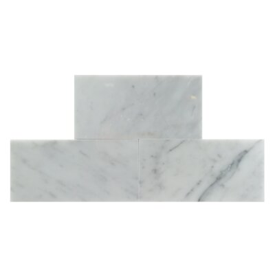 3 x 6 Natural Stone Field Tile in Carrara