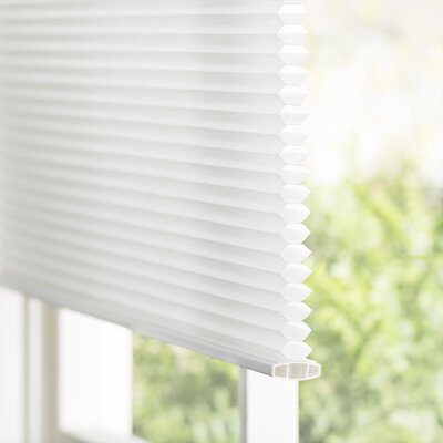 Wayfair Basics Top-Down Bottom-Up Semi-Sheer Cordless Honeycomb Cellular Shade Blind Size: 23