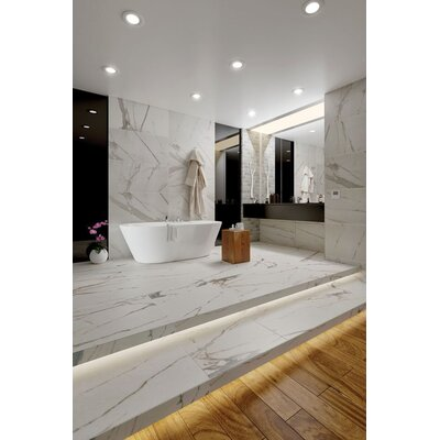 Calacatta Royal 18 x 36 Porcelain Field Tile in White/Gray