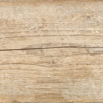Blu Country 8 x 48 Porcelain Field Tile in Tan
