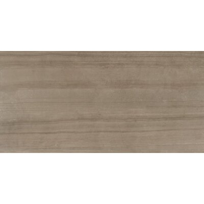 Belle Harbor 18 x 36 Porcelain Field Tile in Taupe