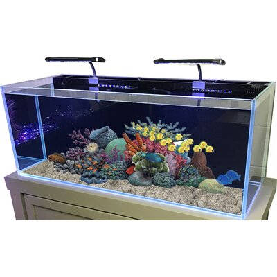 60 Gallon Rimless Glass Combo Aquarium Kit Color: Flat Gray