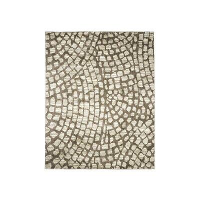Springdale Gray/Ivory Area Rug