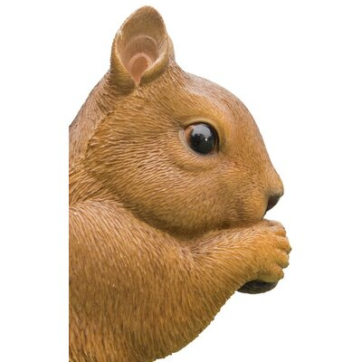 Hambly Squirrel Eating Statue 4FC1C97B332A4E25B9F98F0602A76723