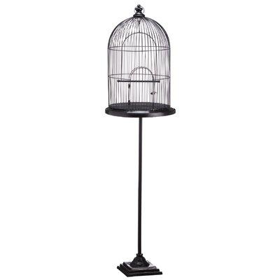 Ishaan Birdcage