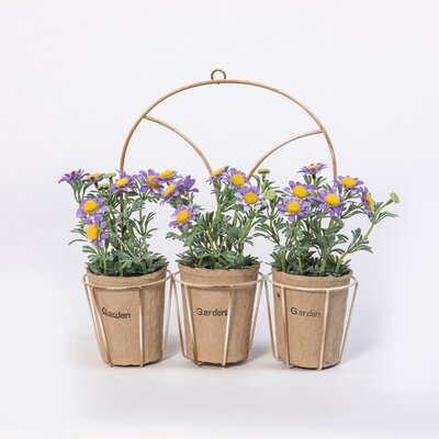 Stockwood Daisies Flowering Desktop/Hanging Plant in Arched Holder (Set of 4) EEED976AF57B4F26BD3F7773E6D23F6F