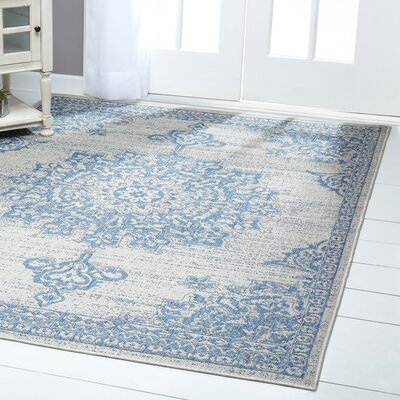 Medallion Gray/Blue Indoor/Outdoor Area Rug