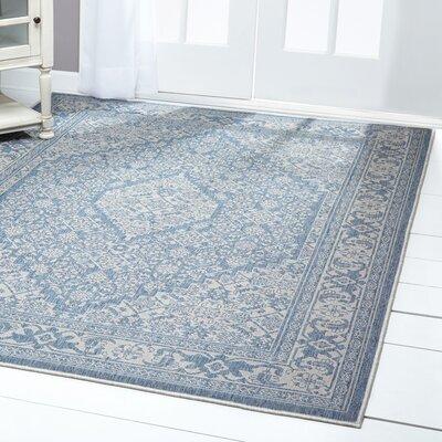 Persian Blue/Beige Indoor/Outdoor Area Rug