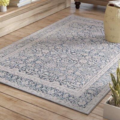Burhan Charcoal Area Rug Rug Size: Rectangle 5 x 76