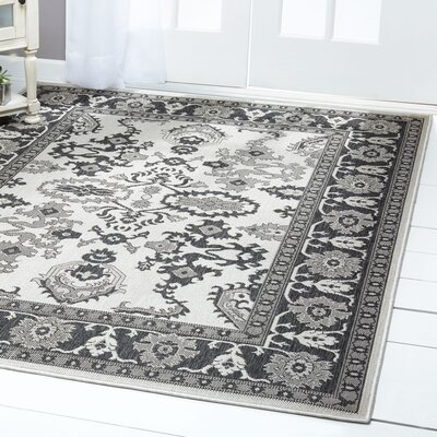 Bordered Gray/Black Indoor/Outdoor Area Rug Rug Size: Rectangle 52 x 72