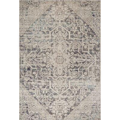 Medallion Sofia Navy/Blue Indoor/Outdoor Area Rug Rug Size: Rectangle 53 x 72