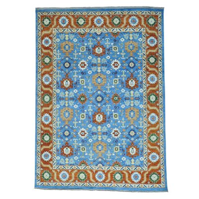 One-of-a-Kind Salvato All Over Hand-Knotted Area Rug