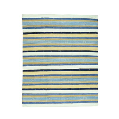 Striped Durie Kilim Flat Weave Hand-Knotted White/Light Blue Area Rug