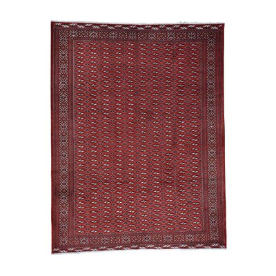 Bokara Oriental Hand-Knotted Red Area Rug