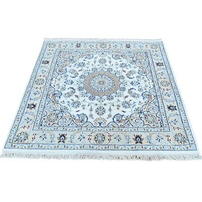250 Kpsi Nain Oriental Hand-Knotted Silk Ivory Area Rug