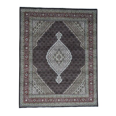 One-of-a-Kind Samons Mahi Oriental Hand-Knotted Silk Area Rug Rug Size: Rectangle 8' x 9'10