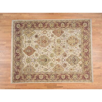 Dense Weave 300 KPSI Mughal Oriental Hand-Knotted Ivory Area Rug