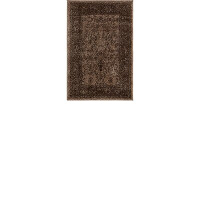 Shailene Brown Area Rug Rug Size: Rectangle 22 x 31.5