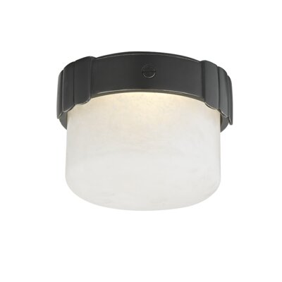 Googe 1-Light LED Flush Mount Fixture Finish: Old Bronze
