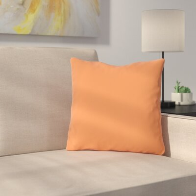 Bilderback Outdoor Throw Pillow Color: Tangerine