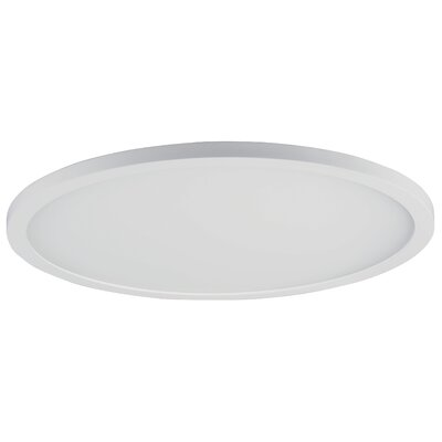 Crutcher 1-Light LED Flush Mount Fixture Finish: White