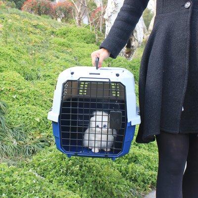 Dog Cat Rabbit Two Door Top Load Car Travel Vet Visit Pet Carrier