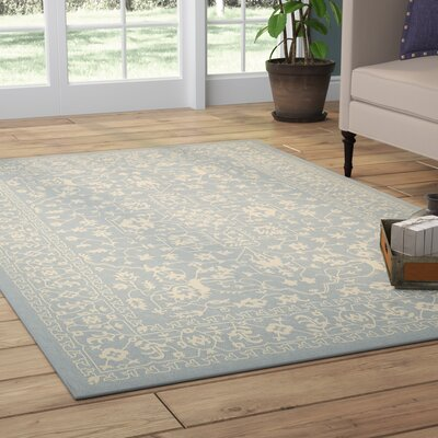 Apollo Light Blue Outdoor Area Rug Rug Size: Rectangle 8 x 114