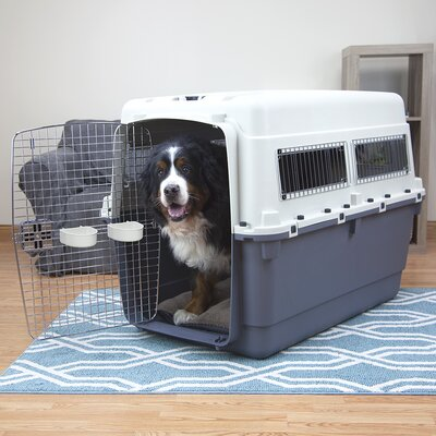 XXXL Premium Plastic Dog Pet Crate/Carrier