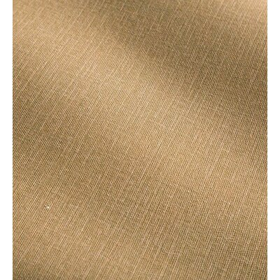Shenandoah Tufted Outdoor Floor Pillow Color: Sand