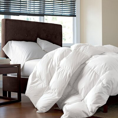 Microfiber Extra Filled Heavyweight Down Alternative Duvet Insert Size: Twin