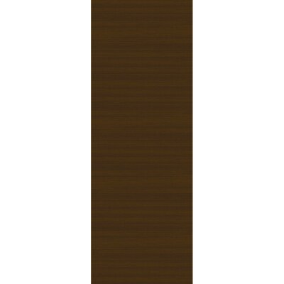 Stain Resistant Espresso Indoor/Outdoor Area Rug Rug Size: Runner 25 W x 7 L